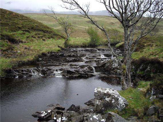 Highland
