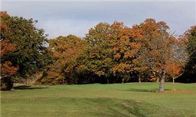 Chingford Green