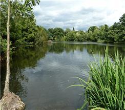 Highams Park