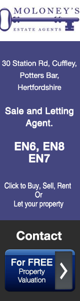 Moloney Estate Agents