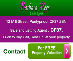 Barbara Rees Estate Agents