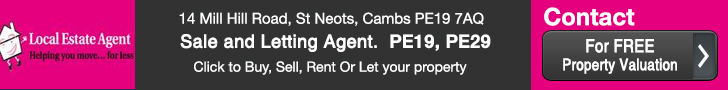 Local Estate Agent